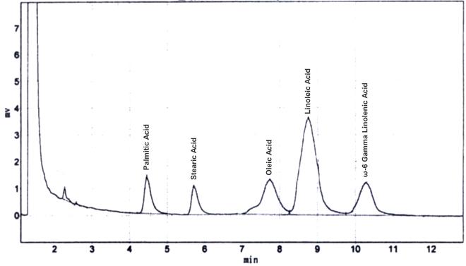 gamma Linolenic acid CAS 506 26 3 GC - γ-Linolenic acid CAS 506-26-3